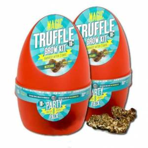 2X Growkit Mexicana Magic Truffle  ? BUY 1 GET 1 FREE